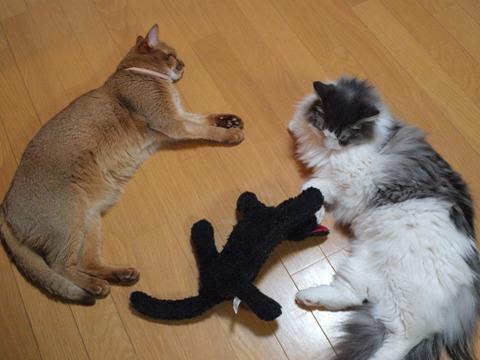 ごろごろガールズ04(2009.09.15)