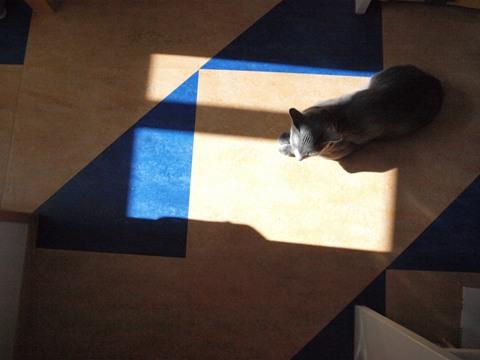 窓の光と04(2009.09.20)