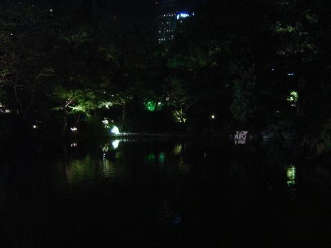 夜の御池(2009.09.22)