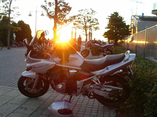 SANY7795.jpg