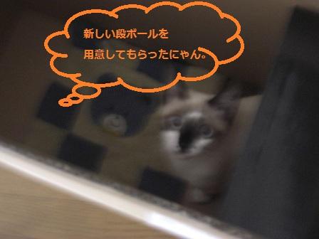 20111024002.jpg