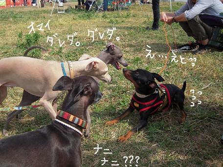 ダレダレ☆ナニナニーーーッ!?