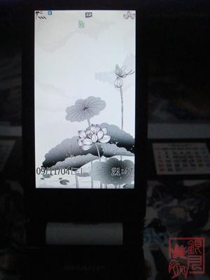 DSC05226200911041.jpg