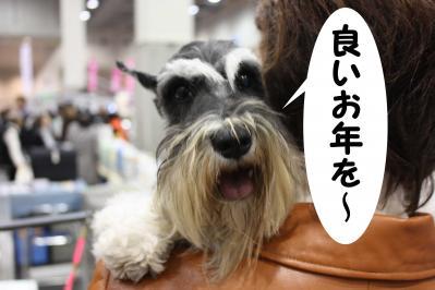 雅大阪インター