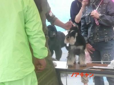 岡山ショーノアチャン1