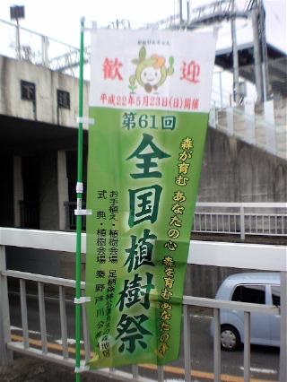 shokujyusai-frag.jpg