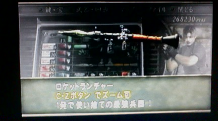 012_20100121010319.jpg