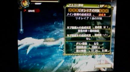 058_20100105221245.jpg