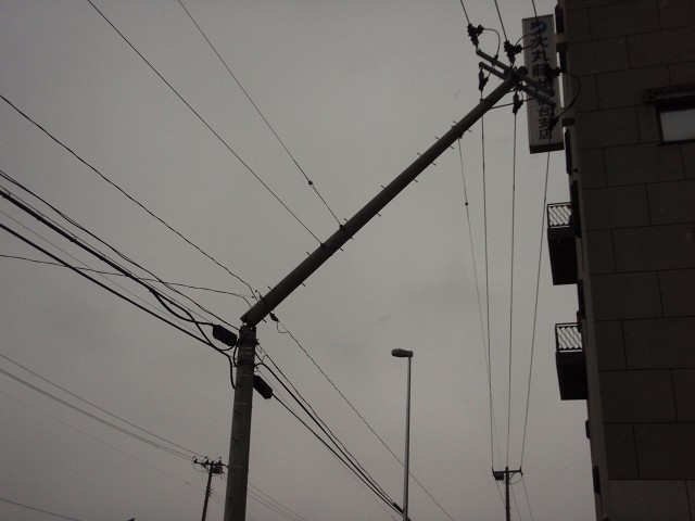 電柱もっ!