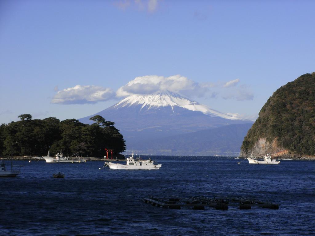 西伊豆で富士を望むならばココやね☆