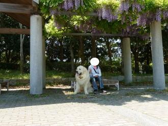 2011_05_09_02.jpg