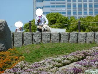 2011_05_09_08.jpg