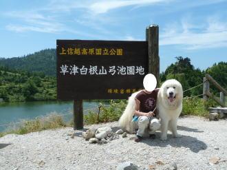 2011_08_18_14.jpg