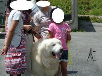 2011_08_18_16.jpg