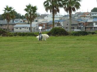 2011_09_18_02.jpg