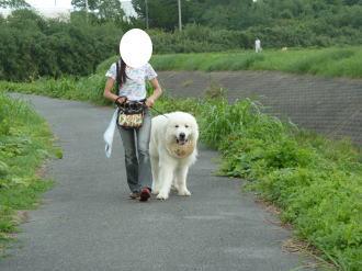 2011_09_18_04.jpg