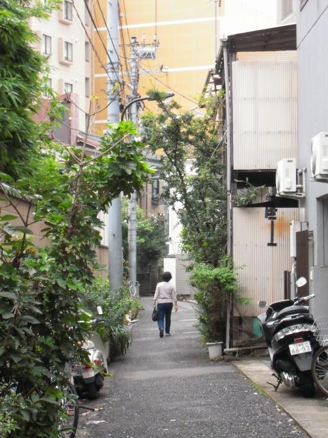 早稲田界隈