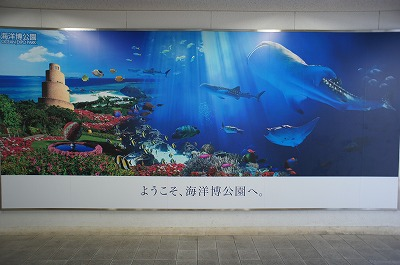 2011okinawa 183