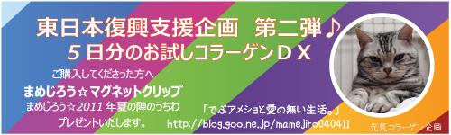 akibana2011-1.jpg
