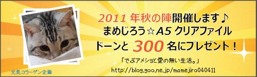 akibana2011.jpg
