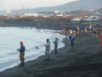 鮭を釣る人々