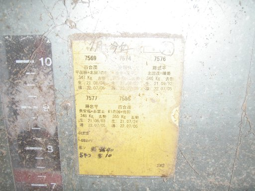 P8070531.jpg
