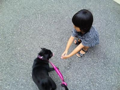 姉妹でお散歩