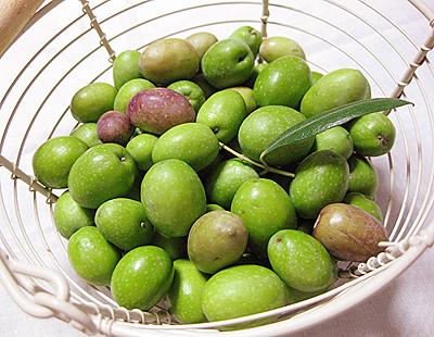 olive10.jpg