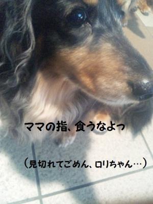 110518 ロリちゃん