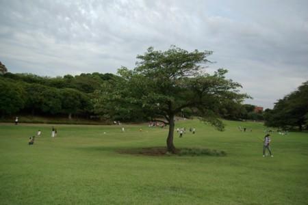 2011092511.jpg