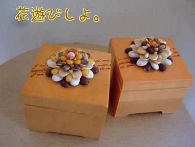 種の花ボックス