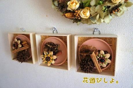 種の花 ボックス