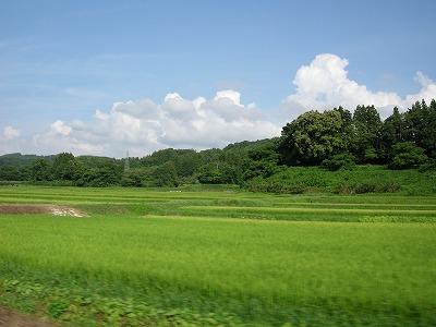 のどかな田園風景2