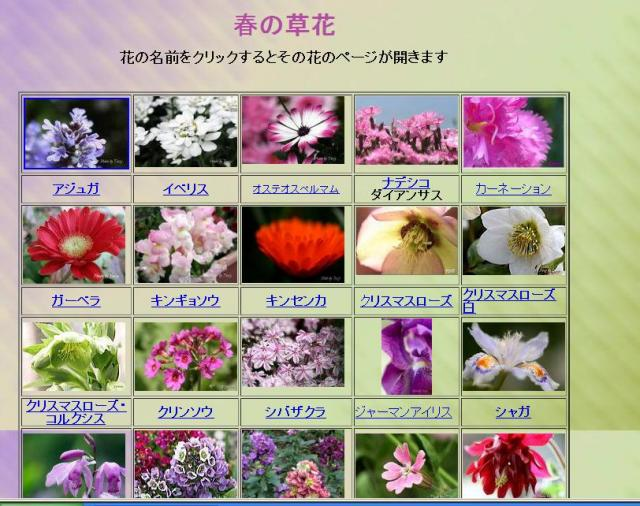 花INDEX