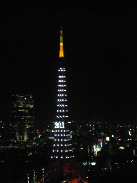 20110109Z47.jpg