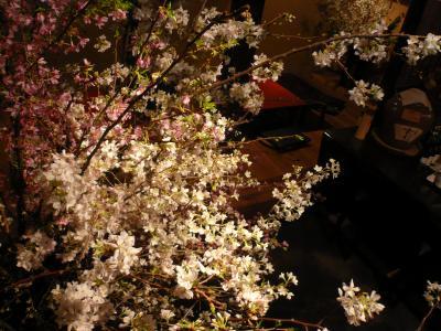 桜(勝道、染井吉野、紅彼岸桜)2