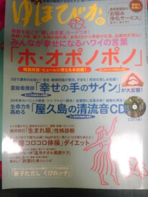 SH3F08520001.jpg