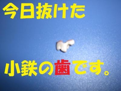 豁ッ_convert_20091105223612