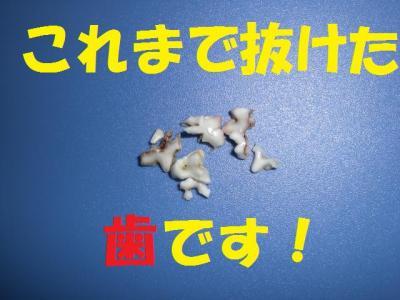 豁ッ2_convert_20091105223919