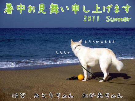 暑中見舞いしゅうまみ-1-2