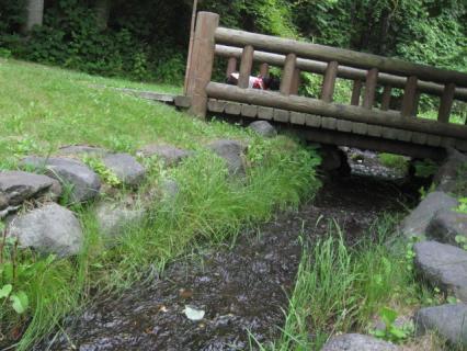 kokufuku3.jpg