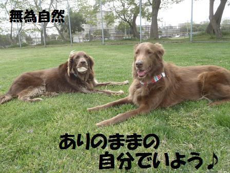 03MAY11 070muishizen