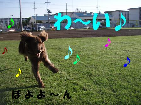 コピー ~ 13MAY10 base run 019a