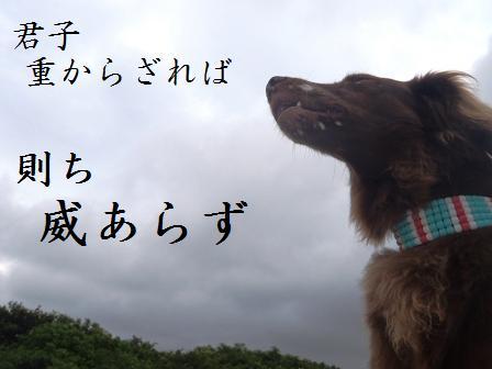 A07JULY11 001kunshi