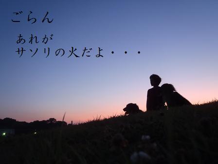 SASORI16JULY11 005a
