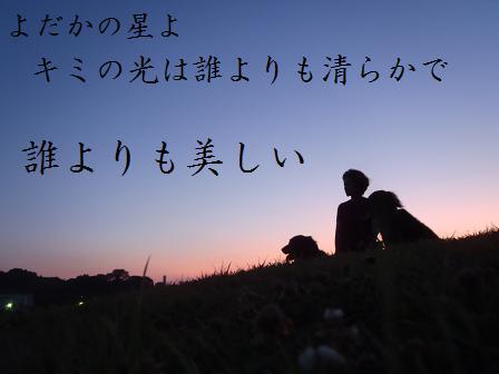 16JULY11 005YODAKA