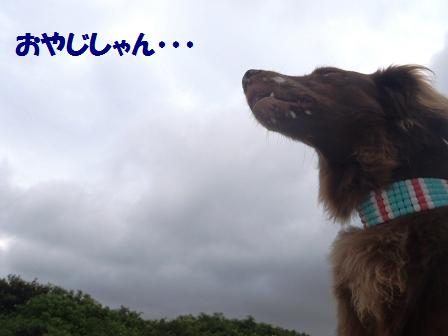 07JULY11 001oyajishan