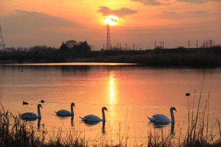 大沼の夕景