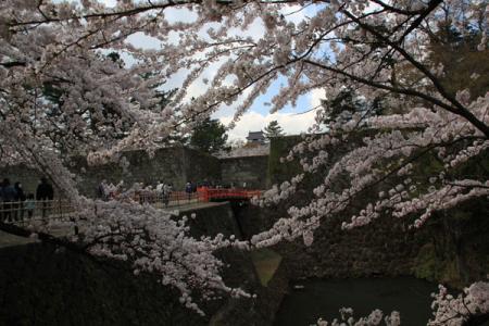 鶴ヶ城の春