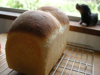 2009.8.31はちみつ食パン(酵母) 018